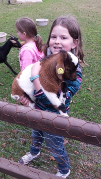 Can I have this baby goat?