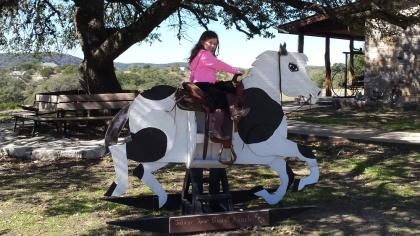 Riding Fake Horses