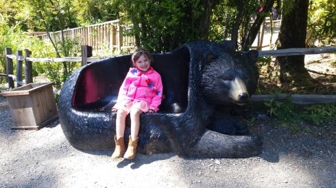 BearSeatRedwoods