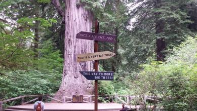 RedwoodFunnySigns2