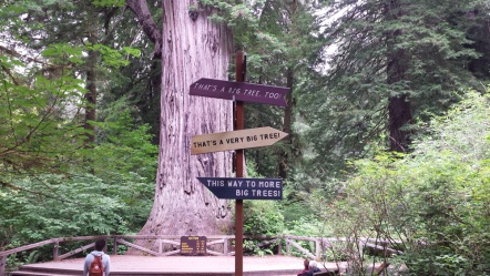 RedwoodFunnySigns2