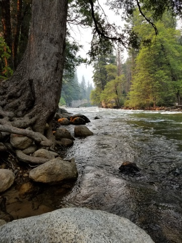 YosemiteValleyRiver