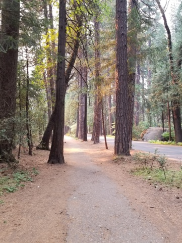 YosemiteValleyTrail